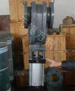 双闸气锁耐磨陶瓷阀-直行式